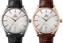 Omega Seamaster Edizione Venezia Watch In Sedna Gold Or Stainless Steel Watch Releases